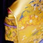 日本人の腸に合う健康法を選ぶ